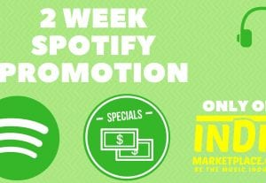 2 Week Spotify Promotion