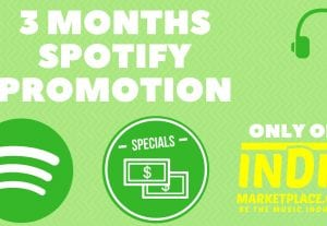 3 Month Spotify Promotion