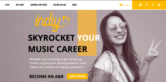 Become an Indiy A&R